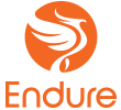 Image result for endure capital